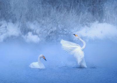 озеро Светлое