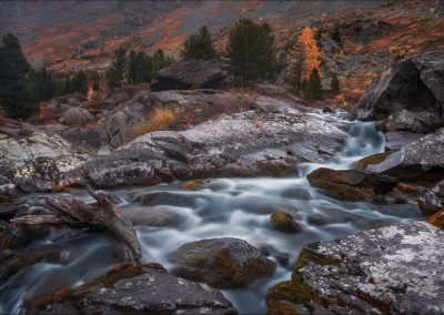 Shallow Rocky Stream Long Exposure View With Pine Trees, Altai M